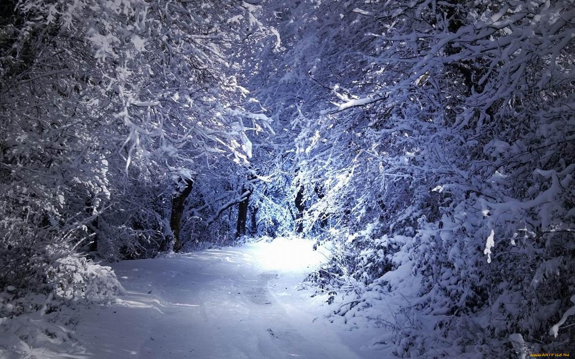 зима новый год обои на рабочий стол высокого качества